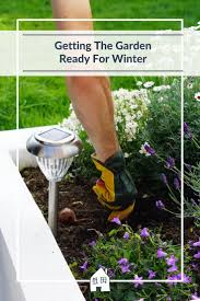367 best gardening images on pinterest gardening tips gardening