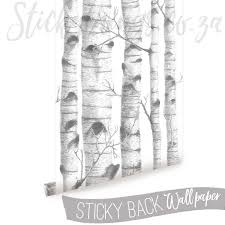 birch tree wallpaper birch trees removable wallpaper stickythings