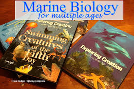 homeschool marine biology for multiple ages hodgepodge