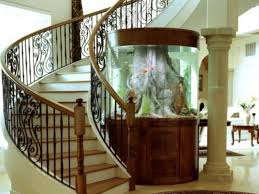 Home Aquarium Decorations Awesome Fish Tank Would Be Better If It Was Floor To Ceiling With