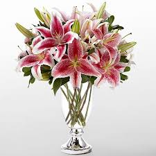 stargazer bouquet the ftd stylish stargazer bouquet by vera wang in wilmington de