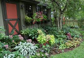 images about shade gardens with small garden plants savwi com