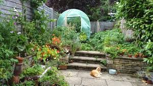 Garden Allotment Ideas Allotment Garden Fence Ideas 12 Terrific Garden Allotment Ideas