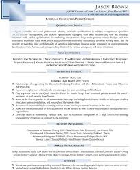 Security Resume Sample by Security Resume Examples Resume Professional Writers