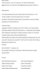 Java Web Developer Resume Sample by Java Developer Resume Template Download Free U0026 Premium Templates