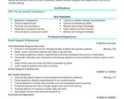 Sample Resume Objectives For Phlebotomy by Direct Support Professional Resume Resume For Your Job Application