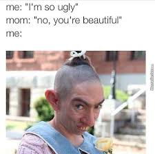 Witty Memes - i m so pretty oh so pretty so pretty and witty and g oh wait