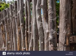 a up view of a traditional fence made of tree branches as is