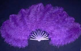feather fans the abc beginner guide how to make ostrich feather fans part 1
