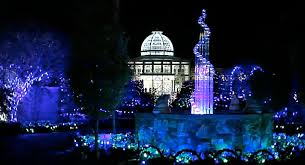 missouri botanical gardens christmas lights learntoride co