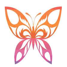 free illustration butterfly design nature insect free image