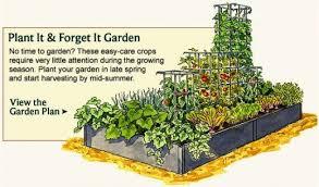 Urban Veggie Garden - planning an urban vegetable garden home decor u0026 interior exterior
