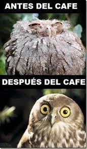 Memes Cafe - 17 memes que sólo entenderás si no puedes vivir sin café