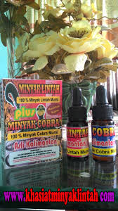 berbagai senyawa bermanfaat dalam produk minyak lintah pembesar