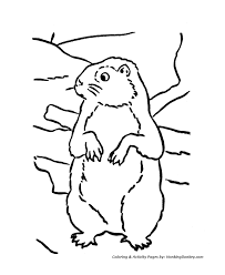 groundhog coloring pages groundhog fun coloring