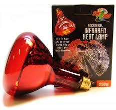 250 watt infrared heat l bulb heat l for snakes agrimarques com