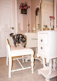White Fluffy Chair Free Images Table Wood Chair Floor Home Animal Looking