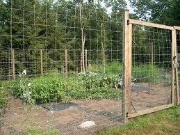 diy vegetable garden fence ways to keep anima 51025 evantbyrne info