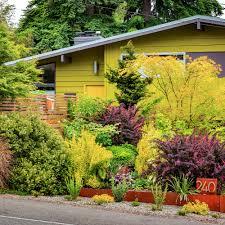 garden landscaping and design ideas