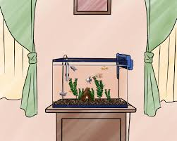 How To Properly Set A Table by How To Set Up A Freshwater Aquarium With Pictures Wikihow