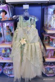everything you ever wanted to know about princess dresses at