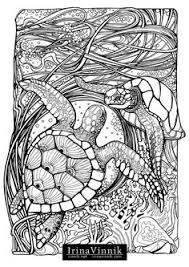 amazon manic botanic zifflin u0027s coloring book 9781523692057