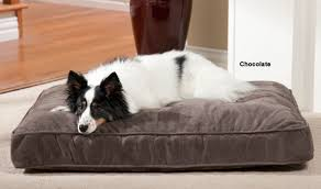 pillow top dog bed luxury orthopedic pillow top dog bed by o donnell quality dog beds
