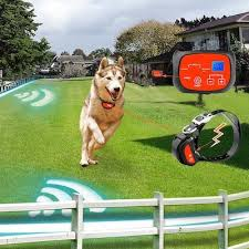 Can You Bury Animals In Your Backyard 50 Best Wireless Electric Dog Fence Systems 2017 Pet Life Today