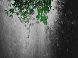 pubg wallpaper gif image animated rain falling backgrounds wallpaper 4 gif animal