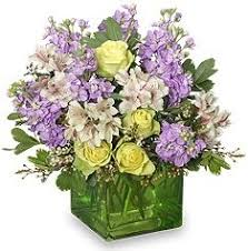 auburn florist about us auburn florist auburn ma