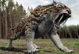 saber tooth tiger facts for kids best for research projects