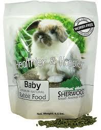 rabbit food baby rabbit food