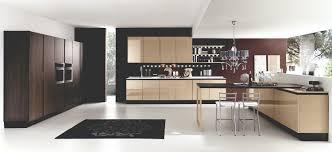 modern day kitchen the best kitchen for your home u0027 distinct homes