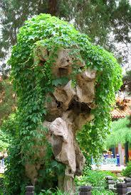 Big Rock Garden Big Rock In Garden Stock Photo Image Of Scenics Nature 7602738