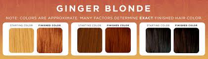 loreal hair color chart ginger jenna sais quois ginger snaps of ginger hair color chart