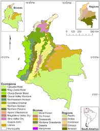 Map Of Caribbean And South America by Map Of The 13 Ecoregions And 1117 Municipalities In Colombia