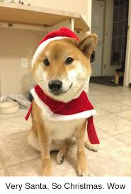 Doge Meme Christmas - 25 best memes about christmas doge and wow christmas doge