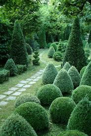 Topiaries Plants - best 25 topiary garden ideas on pinterest formal gardens