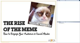 Aspca Meme - the rise of the meme how to engage your audience in social media