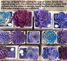 add 1 tsp of liquid food coloring to 1 cup of water drizzle the