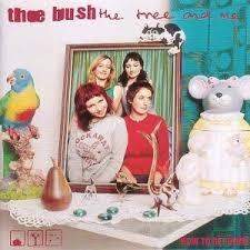 cluas album reviews the bush the tree and me how to get home