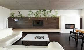 indoor plants inspiration for your apartment decorating idea