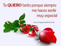 bonitas de rosas rojas con frases de amor imagenes de amor facebook imagenes de rosas rojas con frases de amor con movimeinto imágenes