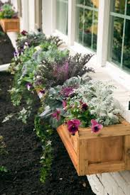 the 25 best fall flower boxes ideas on pinterest fall window