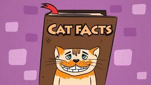 Cat Facts Meme - cat facts prankdial