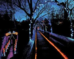 Rock City Garden Of Lights Rock City S Enchanted Garden Of Lights Opens Nov 22