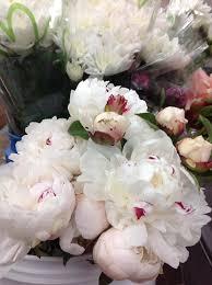 florist huntsville al davis wholesale florist home
