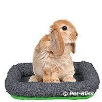 Rabbit Beds Pet Rabbit Supplies Petbliss Pet Shop Ireland