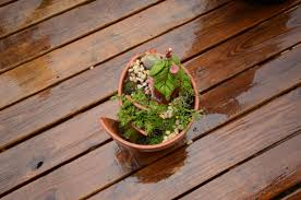a broken pot fairy garden j u0026j acres