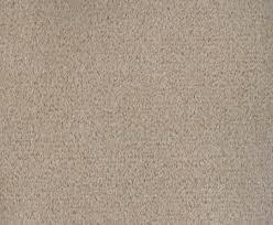 best floor carpet photos 2017 blue maize